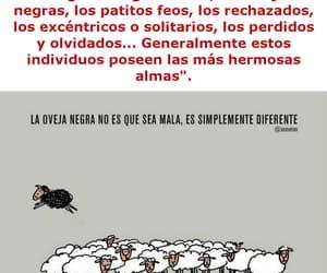raros, oveja negra, and reflexión image