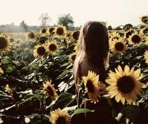 fashion, sunflowers, and field image