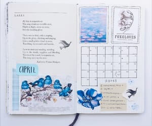 blue, inspiration, and monthly image