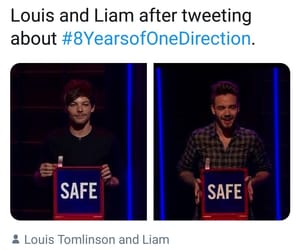 safe, liam payne, and niall horan image