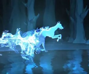 harry potter, pottermore, and patronus image