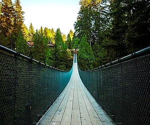 british columbia, capilano river, and canada image