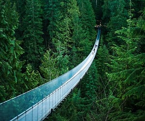 british columbia, canada, and suspension bridge image