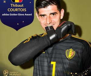 belgium, world cup, and thibaut courtois image