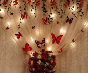 cortinas, mariposas, and decoraciones image