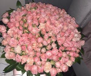 розы image