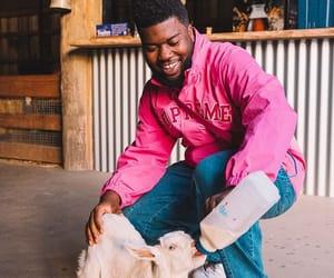 khalid, animal, and goat image