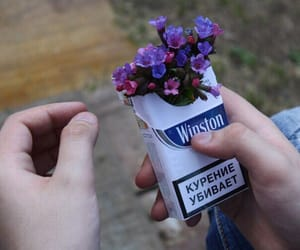 cigarette, flowers, and aesthetic image
