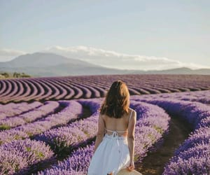 girl and lavender image