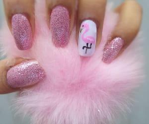 beauty, flamingo, and glitter image