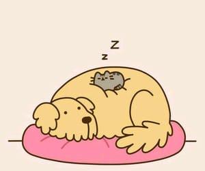cat, pusheen, and cute image