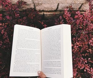 book, flowers, and read image