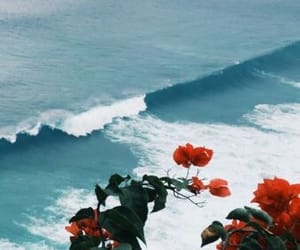 flowers, sea, and Lyrics image