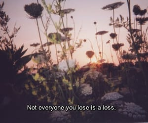 quotes, flowers, and lose image