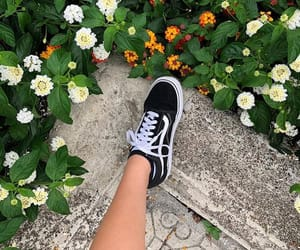flowers, vans, and tumblr image