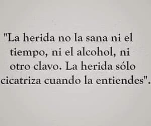 alcohol, books, and letras image