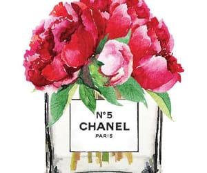 chanel, fragrance, and good image