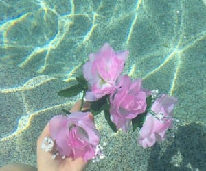 flowers, water, and tumblr image