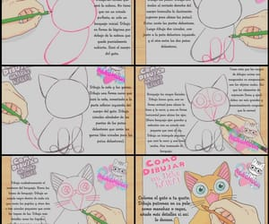 gato, tierno, and kawaii image