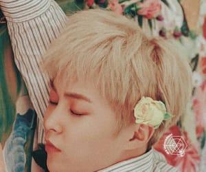 exo, wallpaper, and xiumin image