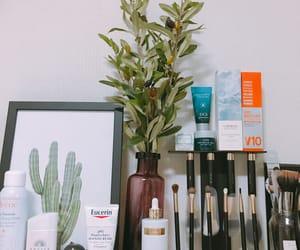 brush, dressing, and cactus image