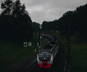 forest, summer, and train image