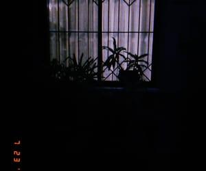 night scenery, photography, and huji cam image