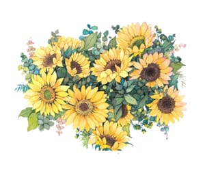 sunflower, art, and drawing image