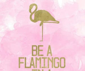 flamingo, cute, and gold image