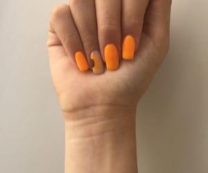 flower, nailpolish, and nails image