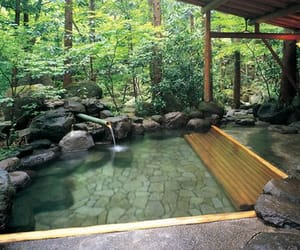 japan, trees, and onsen image