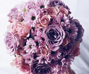 black, purple, and flower image