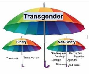 lgbtq, trans, and transexual image