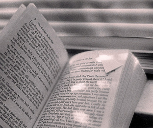 book, catcher in the rye, and j.d. salinger image