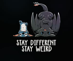 stitch, toothless, and lilo and stitch image