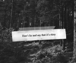 lies, quotes, and okay image