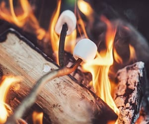 marshmallow, autumn, and fire image