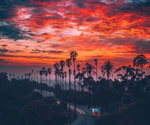sunset, sky, and palms image