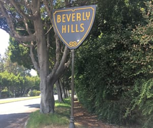 beauty, Beverly Hills, and california image