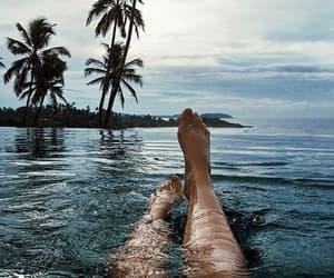 palmtrees, summer break, and pool image