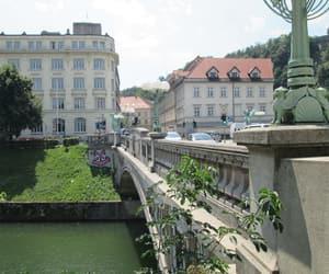 bridge, river, and dragon image
