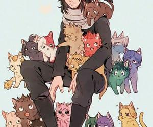 boku no hero academia, anime, and cat image