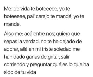 amor, lol, and reggaeton image