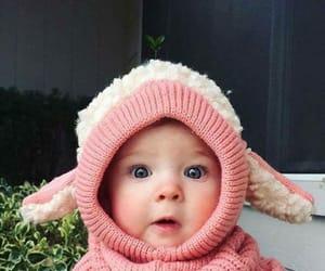 baby and sheep image