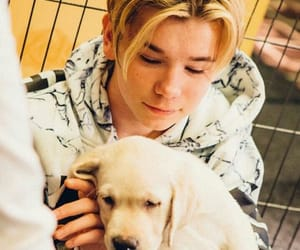 blonde, boys, and dogs image