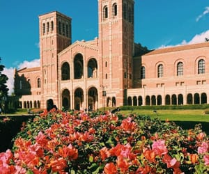campus and ucla image