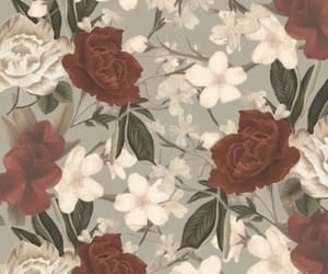 background, flowers, and grey image