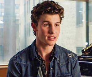 shawn mendes, adorable, and aesthetic image