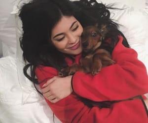 kylie jenner, dog, and jenner image