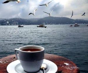 birds, coffee, and sea image